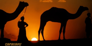 Le Vie della Seta.Silk Roads